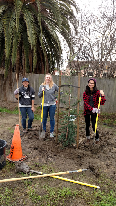 Tree planting on AmeriCorps Day of Service